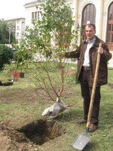 Actualul senator Iani Popa in anul 2008 la Campulung plantand copacei in fata Judecatoriei! (1)