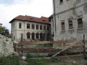 Casa de Cultura Tudor Musatescu (2)