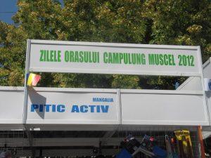 ZILE MUNICIPIU 2012 2 011