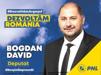 PNL_bogdan_david_decembrie_2020