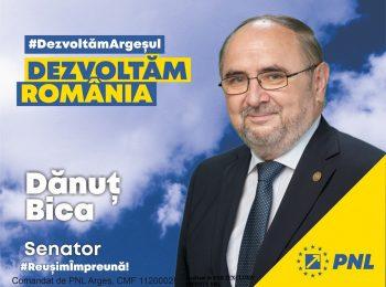 PNL_danut_bica_decembrie_2020